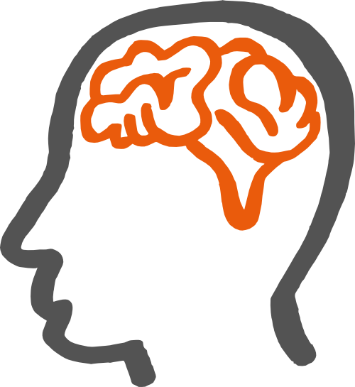 Kopf_brain